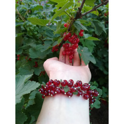 Berry bracelet red currant